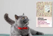 Romanzo il gatto che voleva salvare i libri