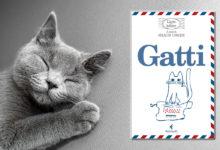 Recensione del libro l'arte delle lettere sui gatti