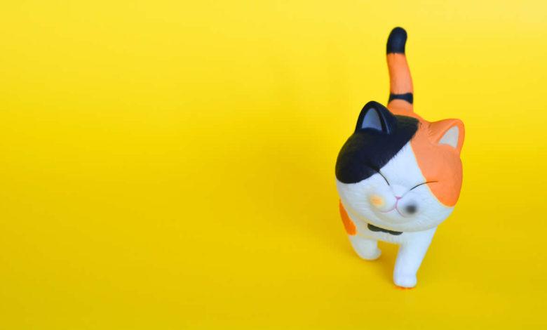 I più originali nomi per gatti dal Giappone